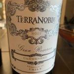 TerraNoble 2017 Gran Reserva Carmenere
