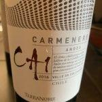 TerraNoble CA1 2016 Carmanere Andes