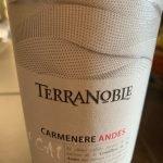 TerraNoble CA1 2017 Carmenere Andes