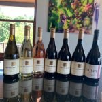 Seven Wines from Youngberg Hill